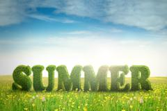 Summer text on the meadow - stock illustration