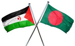 Western sahara flag with Bangladesh flag, 3D rendering - stock illustration