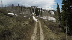 Aerial-Mountain dirt road pines aspens snow Stock Footage