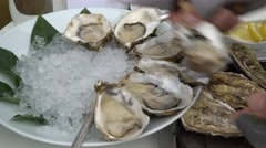 Chef puts on the ice open fresh oysters. Close Up. - stock footage