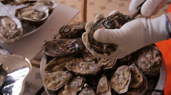 Chef opens fresh oysters for Diners. - stock footage