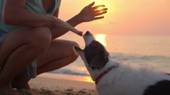 Woman Playing with Her Dog on The Beach at Sunset Stock Footage