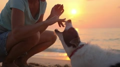 Сlose Friendship of Woman and Dog. Summer Beach at Sunset. Stock Footage