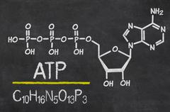 Blackboard with the chemical formula of ATP Stock Photos