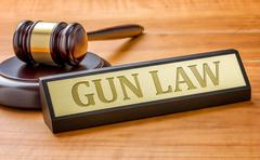 A gavel and a name plate with the engraving Gun Law - stock photo