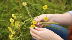 Girl weaves a wreath of wildflowers. Stock Footage