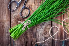 bunch of organic chives - stock photo