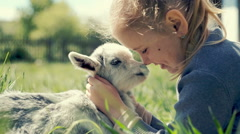 Little girl playing with a goatling outdoors. RAW video record Stock Footage