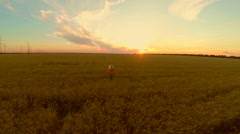 Young woman runs on a wheat field to the sunset. Slow motion Stock Footage