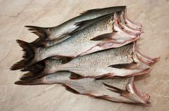Carcass silver carp - stock photo