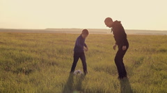 Father and son playing ball in the meadow Stock Footage