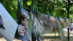 Public photo exhibition in park. Stock Footage