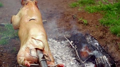Pig on a spit - stock footage