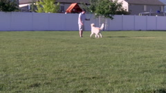 Throwing Ball for Dog 2 Stock Footage