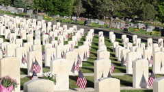 Pan across military headstones Stock Footage