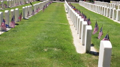 Profile of Headstones Day Stock Footage
