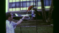 1977: Man feeding pet red parrot crackers in fashionable bright yellow pants. Stock Footage