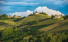 Vineyards of Langhe, Piedmont, UNESCO world heritage - stock photo
