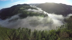 Aerial view over pines tree forest of a mist covered Whanganui River Stock Footage