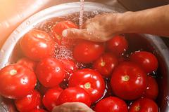 Male hands wash big tomatoes. Stock Photos