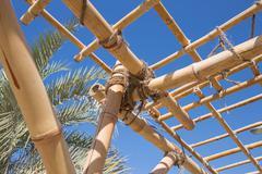bamboo trellis - stock photo