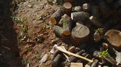 Throwing Wood On A Pile 03 Stock Footage