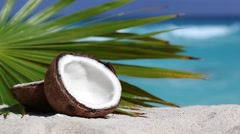 Two halfs of cracked brown coconut on white sandy beach with palms leaf Stock Footage
