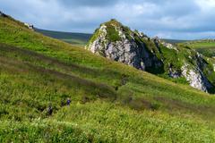 Hiking in alpine meadows - stock photo