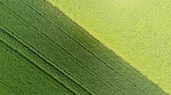 Aerial view of cultivated area - stock footage