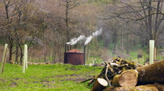 Charcoal burner huts at roddlesworth woods Stock Footage