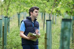 Forestry Worker With Clipboard Checking Young Trees - stock photo