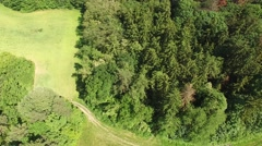 Flight over the spring woods Stock Footage