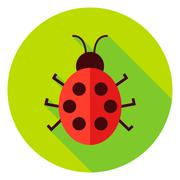 Ladybug Insect Circle Icon Stock Illustration
