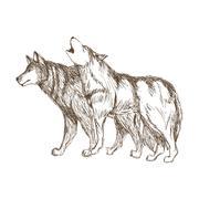 Wolf design. Animal concept.Wildlife animal, vector illustration Stock Illustration