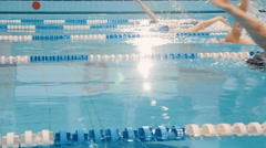 Professional swimming competition in the pool Stock Footage