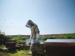 Beekeeper with smoker and hives - stock photo