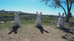 360 Degree Pan Of White Rabbit Statues- Real Time Stock Footage