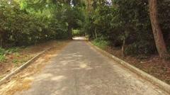 Cocoa plantation road at Chuao, Venezuela Stock Footage