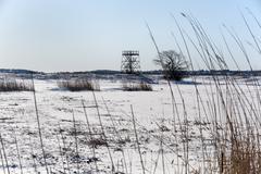 Cold day Parker River National Wildlife Refuge - stock photo