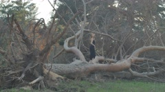 Girl walking on the felled pine tree in the evening Stock Footage
