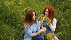 Best friends. Wreaths of flowers. Stock Footage