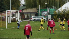Scoring a Goal In A Football Soccer Match - stock footage