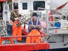 Fisherman holds fish on boat in harbour Stock Photos