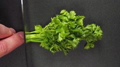 SLOW: Human hand cut a parsley and it flies away Stock Footage
