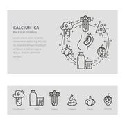 Calcium nutrition pregnancy - stock illustration