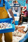 Fisherman holding tray of fresh fish Stock Photos
