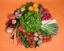 Circle of seasonal fruits and vegetables - stock photo