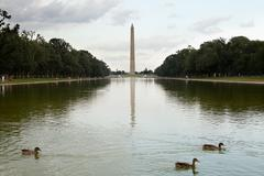 Washington monument and reflecting pool, Washington DC, USA - stock photo