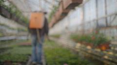 Worker watering flowers in 4K Stock Footage