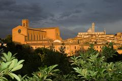 Santa Maria Assunta cathedral, Siena, Italy Stock Photos